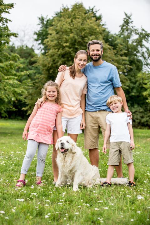 FamilyOffice-1141735667.jpg
